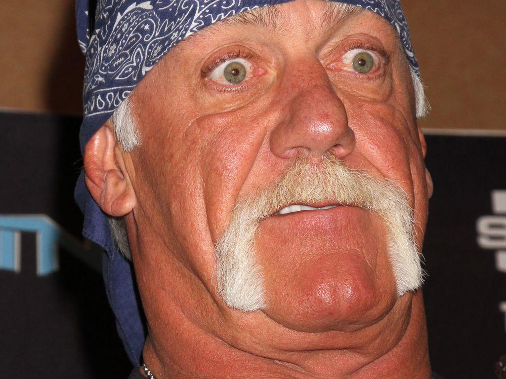 Hulk Hogan schaut angewidert