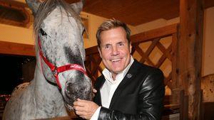 Dieter Bohlen mit einem Pferd
