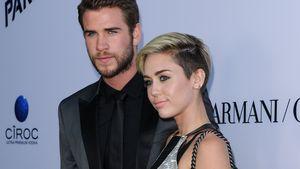 Miley Cyrus und Liam Hemsworth auf dem red Carpet