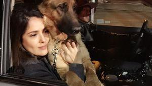 Salma Hayek mit einem Hund