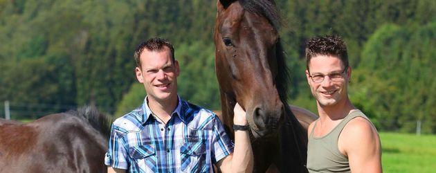 articles view pferdesingles aufgepasst reiter sucht reiterin