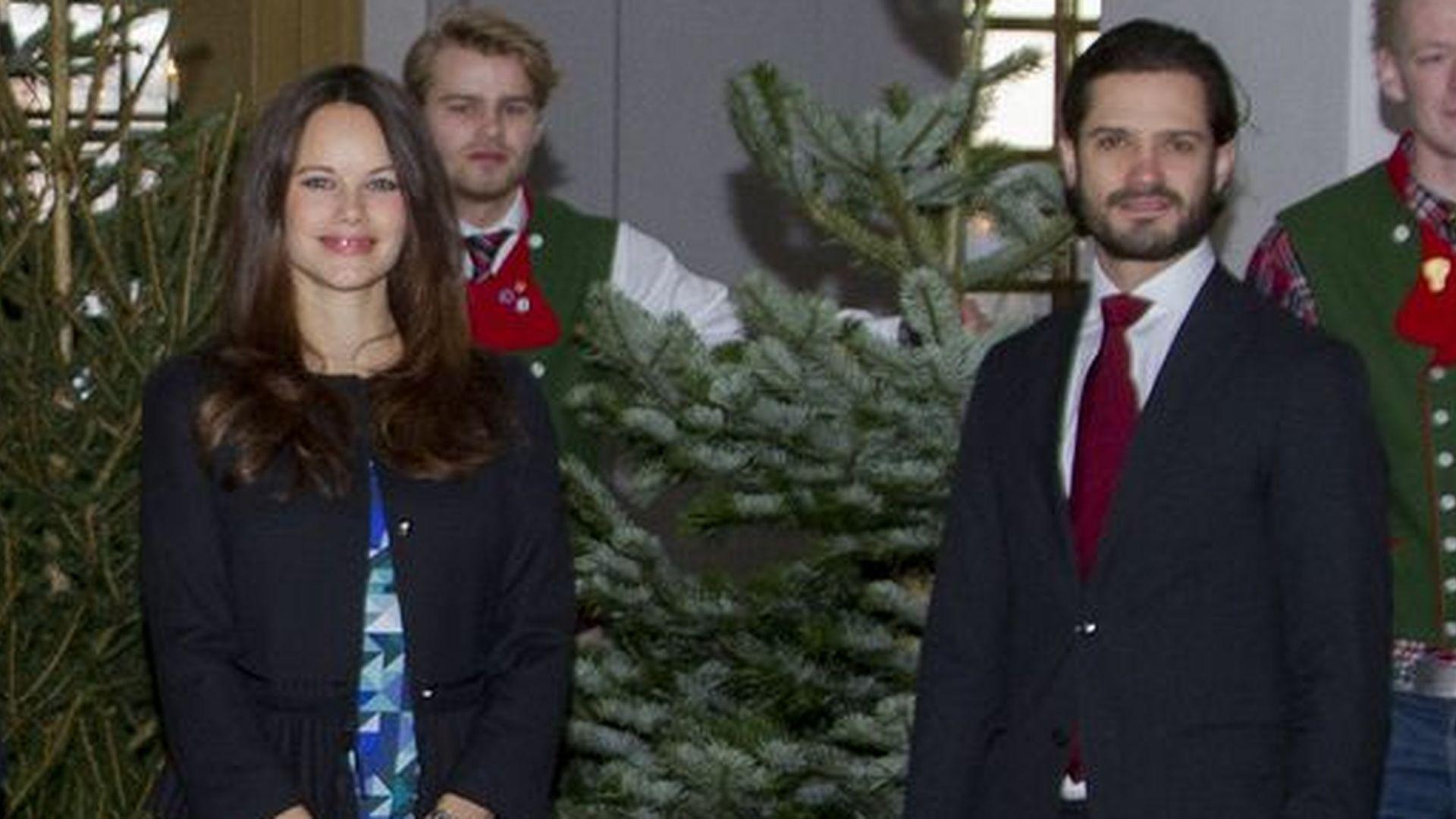 Blau am Baum! Überzeugt Prinzessin Sofias Schwanger-Look?