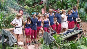 Erstes Dschungel-Aus: Ein Star hat das Camp schon verlassen!
