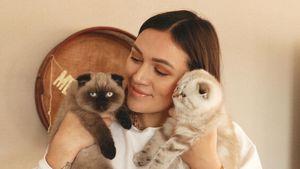 Nach Streit mit Schwester: Anna Maria Damm hat neue Katzen
