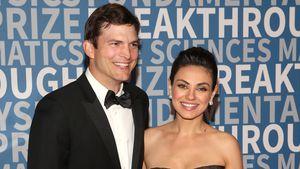Ashton Kutcher kreiert eigene Weinsorte für den guten Zweck