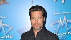 Bei Brad Pitt sprießt es wieder