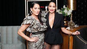 Nach der Geburt ihrer Kids: Bella-Twins bald wieder im Ring?