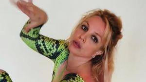 Heiße Schlange: Hier posiert Britney Spears im gewagten Look