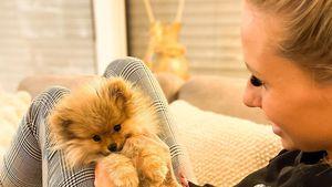 Carina Spack ist sauer: Sie schiebt ihren Hund nicht ab!