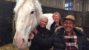 "Tamme Hankens Pferd ""Jumper"" starb wegen eines Giftanschlags"