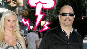 Versöhnung in Sicht? Ice-T löscht wütende Tweets