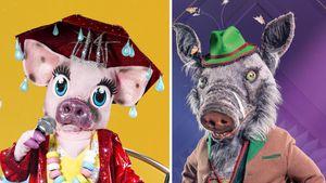 """Doppel-Fail: Welches """"The Masked Singer""""-Schwein überzeugt?"""