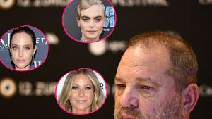 Nach Cara: Auch DIESE Promis wurden von Weinstein belästigt!