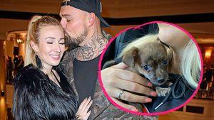 Zweiter Hund: Nachwuchs bei Jessica und Niklas Schröder