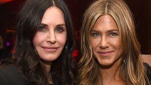 """Monica und ihr Ex: """"Friends""""-Reunion bei diesen beiden Stars"""