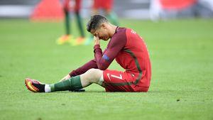Tierischer EM-Star! Ronaldo-Motte hat eigenes Twitter-Profil