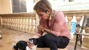 Büchners bangen um ihren Familienhund: Gina hat zwei Tumore!