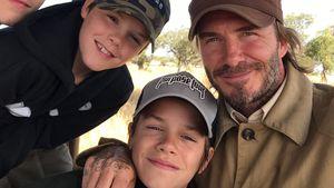 Super-Daddy! David Beckham gibt für seine 4 Kids Vollgas