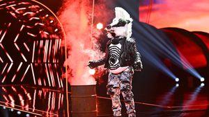 """""""Masked Singer Austria"""": Dieser ESC-Star ist der Frechdachs"""