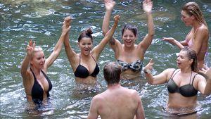 Heiße Badesession im Busch: Ansgar taucht mit fünf Frauen ab
