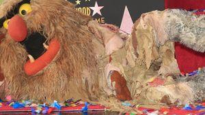 Die Muppets: Bunte Party zur Stern-Verleihung!