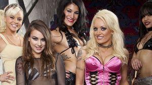 Charlie Sheens Ex managt jetzt Porno-Star-Band