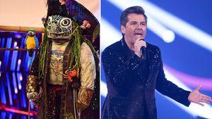 """Diese """"The Masked Singer""""-Indizien passen zu Thomas Anders"""