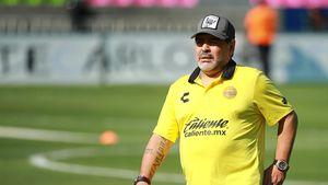 Maradona ist froh über Kraken-Orakel Pauls Tod