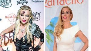 Abzocke & Augenwischerei? Sidos Ex schießt gegen Sidos Frau