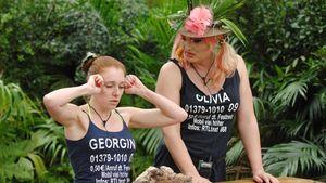 Georgina Fleur und Olivia Jones im Dschungelcamp 2013