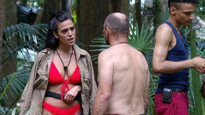 Elena Miras' Dschungel-Ausraster: Was denken die Ex-Camper?