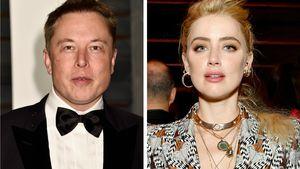 """""""Völlig falsch"""": Elon Musk bestreitet Affäre mit Amber Heard"""