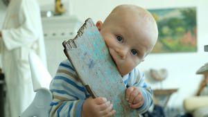 Emil-Ocean, der kleine Entdecker: So abenteuerlustig ist er!