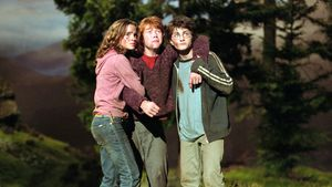 """Harry Potter""-Star: Die Geschichte hinter Film-Hund Fang"