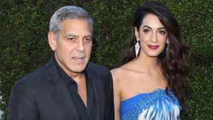 George & Amal Clooney: Stress mit anderen Restaurant-Gästen!