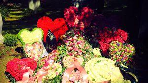 Mit 25: Natascha Ochsenknechts Nichte Emily wurde beerdigt