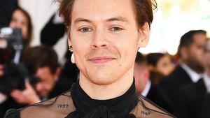 Oben ohne: Wo sind Harry Styles' Tattoos plötzlich hin?