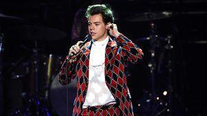 Rührend: Harry Styles stoppt Gig, um panischen Fan zu helfen
