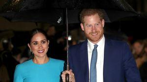 Wollten Harry und Meghan das Königshaus gar nicht verlassen?