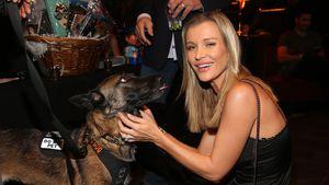 Mit ihren Hunden: Joanna Krupa verrät das Baby-Geschlecht!