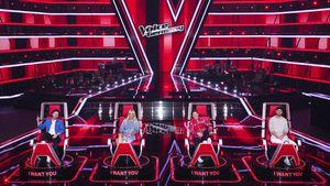 """""""The Voice""""-Auditions: Dieser Star war Überraschungsgast!"""