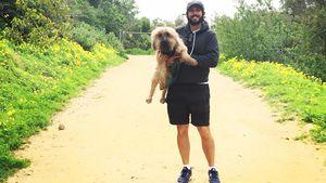 NYC-Anschlag: Josh Grobans Hund rette ihm das Leben!