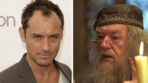 Jude Law und Dumbledore