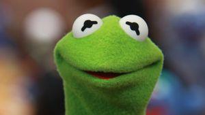 """Wie bitte? Schnecke bei US-""""The Masked Singer"""" war Kermit!"""