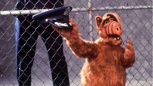 Endlich bekannt: Daran starb Alf-Darsteller Michu Meszaros!