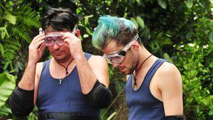 Alles oder nichts! Sind die Dschungel-Prüfungen zu hart?