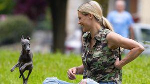 Mit Familie und Hunden: Michelle Hunziker entspannt im Park