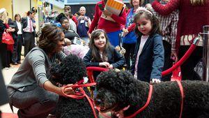 Blutiger Biss: Obamas Hund Sunny beißt Frau ins Gesicht!