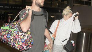Miley Cyrus und Liam Hemsworth Hände