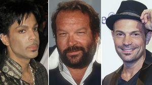 Prince, Bud Spencer, Roger Cicero